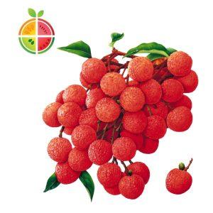 FruitSabzi –Lychee
