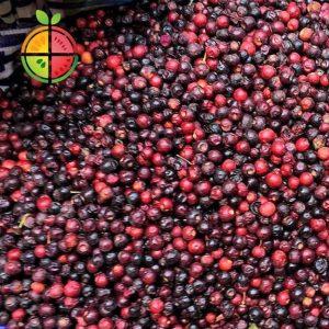 FruitSabzi - Falsa